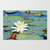 Magic Lily Canvas Print
