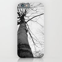 iPhone & iPod Case featuring pantree by Marga Parés