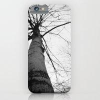 Pantree iPhone 6 Slim Case