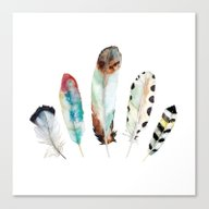 5 Feathers No. 9 Canvas Print