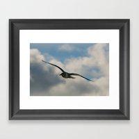 Graceful Wings Framed Art Print