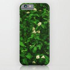 Greenery II iPhone 6 Slim Case