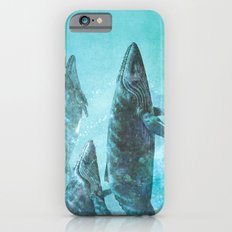 Pod  Slim Case iPhone 6s