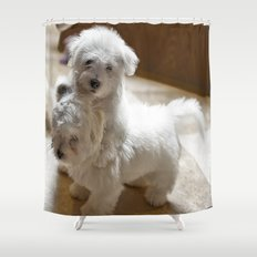 What? Do I have to stop! Shower Curtain
