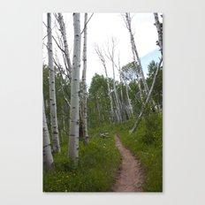 Sunday's Trail #2 Canvas Print