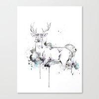 Crowned II Canvas Print