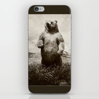 brother bears iPhone & iPod Skin