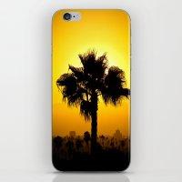 Echo Park Series #7 iPhone & iPod Skin