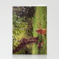 Polaroid Tree Stationery Cards