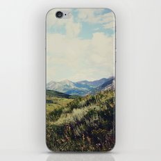 Down in the Valley iPhone & iPod Skin