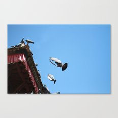 all day long Canvas Print
