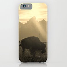 History on Hooves iPhone 6s Slim Case