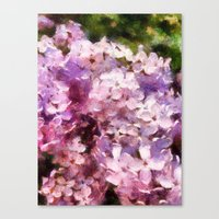 lilac season is my favorite  Canvas Print
