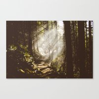 Breams  Canvas Print