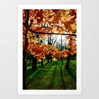 Orange Fall Art Print