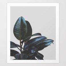 Botanical Art V4 #societ… Art Print