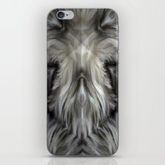 The Grey Witch iPhone & iPod Skin