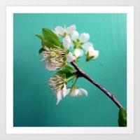 Still Life With Spring Art Print