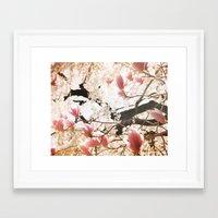 Spring Paradise Framed Art Print