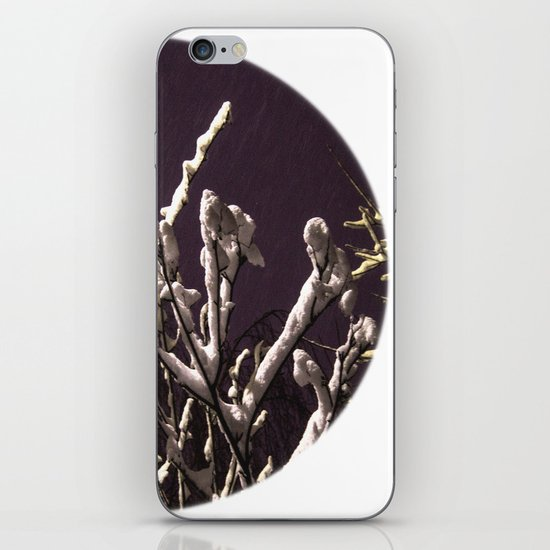 Saying goodbye to winter iPhone & iPod Skin