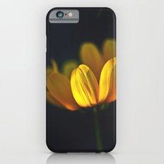 Golden Glow Slim Case iPhone 6s