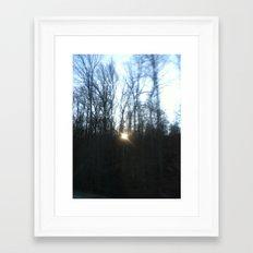Southern Forest Sunset Framed Art Print