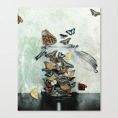 Butterfly Jar Canvas Print