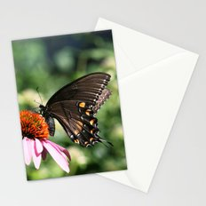 Eastern Tiger Swallowtail - Black Morph Stationery Cards