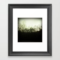 Southern Forest Framed Art Print