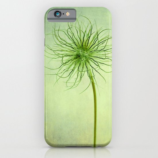pulsatilla seed head iPhone & iPod Case