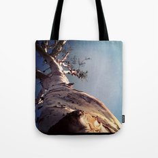 Wisdom That Touches the Sky Tote Bag