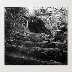 The Woodland Stair Canvas Print