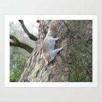 Squirrel Gymnastics Art Print