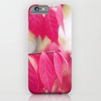 Autumn Splendor iPhone 6 Slim Case