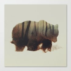 Watched By Grizzly Bear Canvas Print