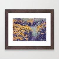 My summer garden Framed Art Print