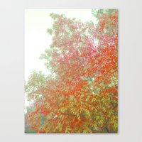 Orange Frosted Canvas Print