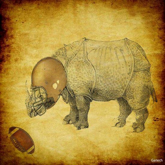 Rhinocéros Football Art Print
