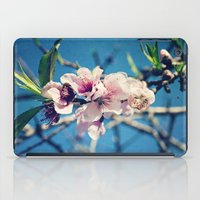 Nectarine Blossoms iPad Case