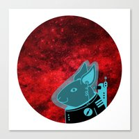 Space Rabbit Canvas Print