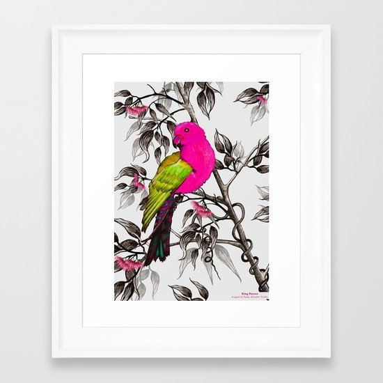 King Parrot Framed Art Print