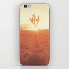 Desert Life iPhone & iPod Skin
