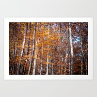 Golden brown leaves Art Print