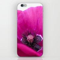 purple poppy iPhone & iPod Skin