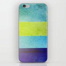 Color Joy II iPhone & iPod Skin