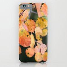aspen leaves. iPhone 6 Slim Case