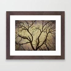 Trees are the lungs of the world Framed Art Print