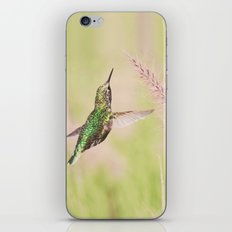 Little Hummer iPhone & iPod Skin