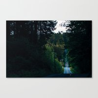 Northwest Backroads Canvas Print