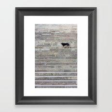 Doge on stairs Framed Art Print